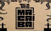 CCT Ao Vivo: Trio Macaíba
