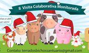8 Visita Colaborativa e Monitorada