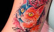 4ª Expo Tattoo
