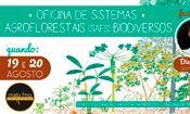 Oficina de Sistemas Agroforestais (SAFs)