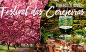 22º Festival Cerejeiras + Rota dos Vinho