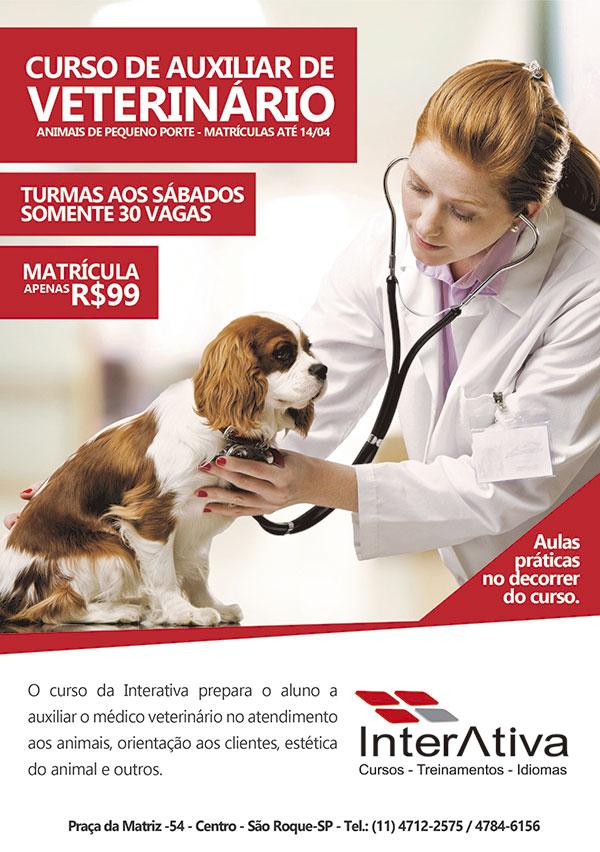 Curso de auxiliar veterinario - Unipet | Cursos | Curso Auxiliar ...