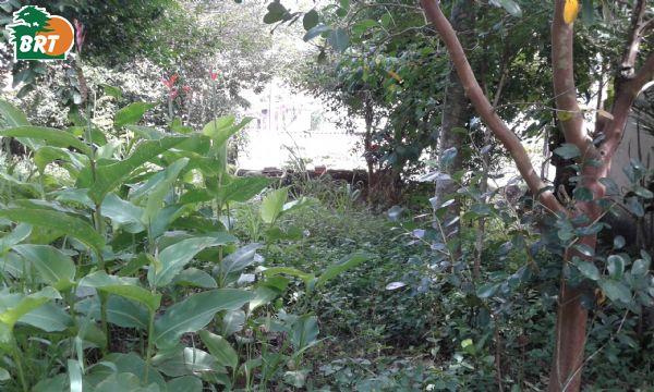 TE00092 - Jardim Flórida - SÃO ROQUE - S